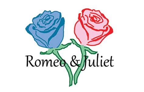 Romeo and juliet essay questions love